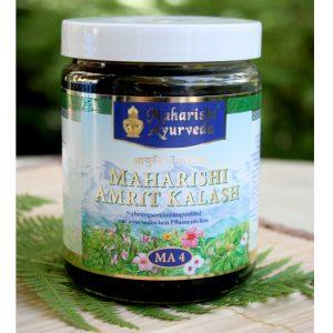 Amrit Kalash Paste im Ayurveda Parkschlösschen Onlineshop